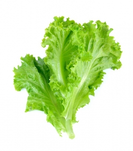 Lettuce  Green Leaves 250 gm